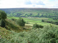 Farndale and Bragg Farm